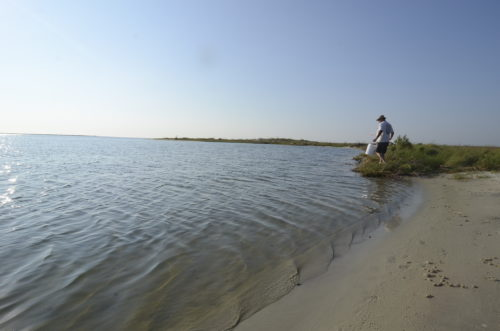 guide to fishing on dauphin island