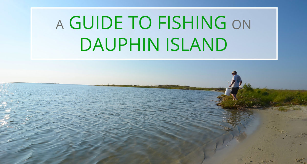 dauphin island fishing